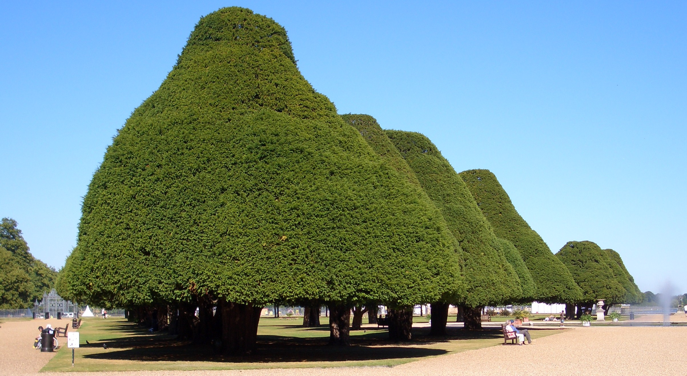 1 the alice in wonderland mushroom trees at hampton court in london Old Hat press releases will no longer cut it